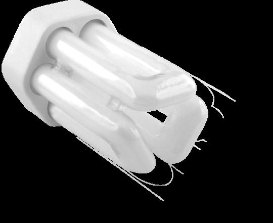 PLT 13W 4 Pin - Warm White