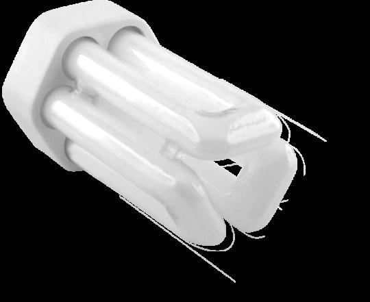 PLT 18W 2 Pin - Cool White