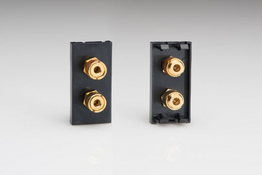 VARILIGHT Lighting - SPEAKER MODULE IN BLACK WITH 2 BINDING POSTS. USE WITH DATA GRID PLATES - Z2GSP2B